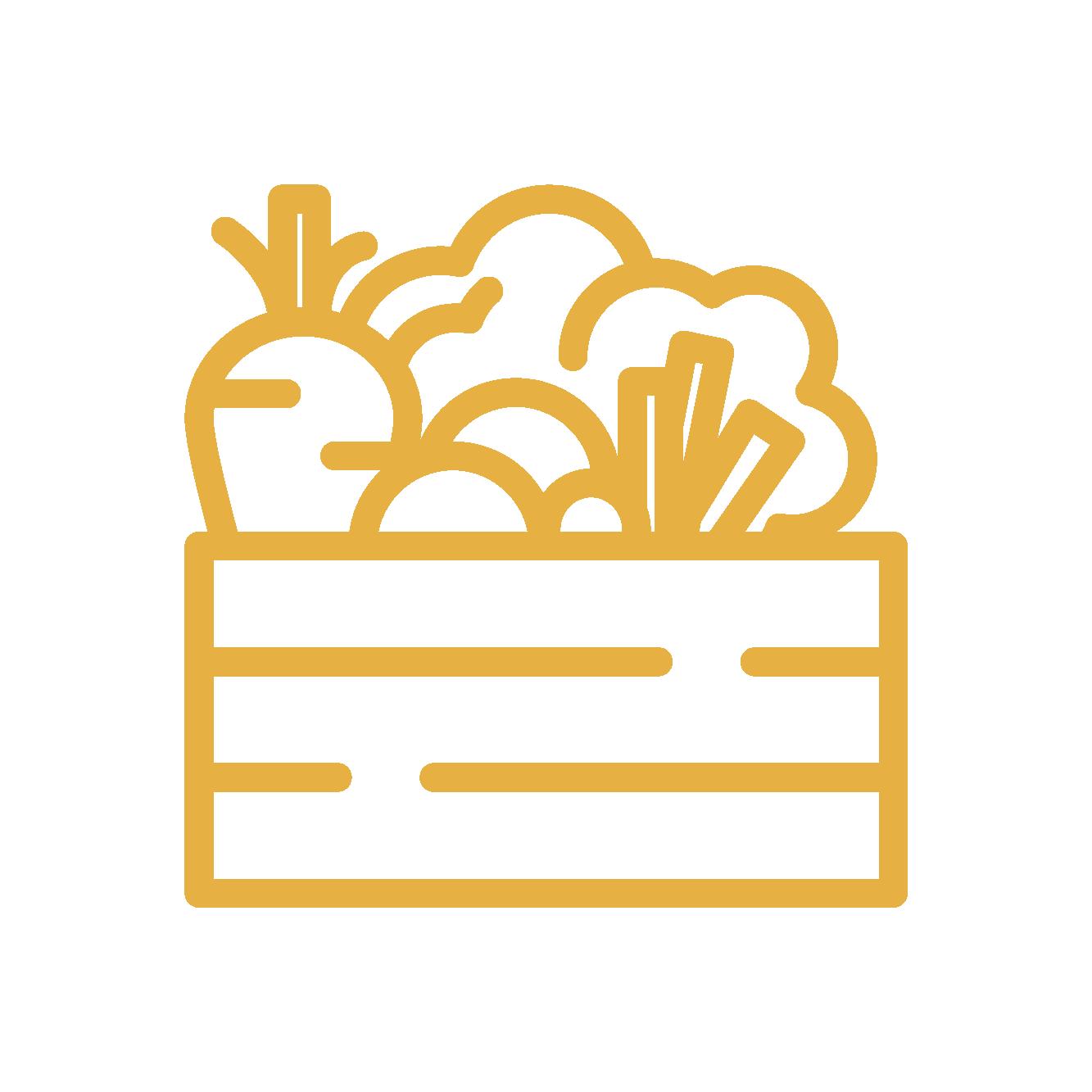 icona cassetta